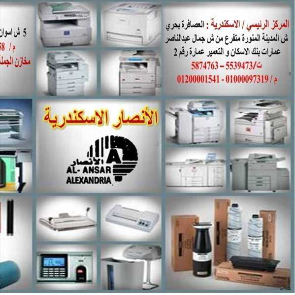 Other Categories  Alexandria